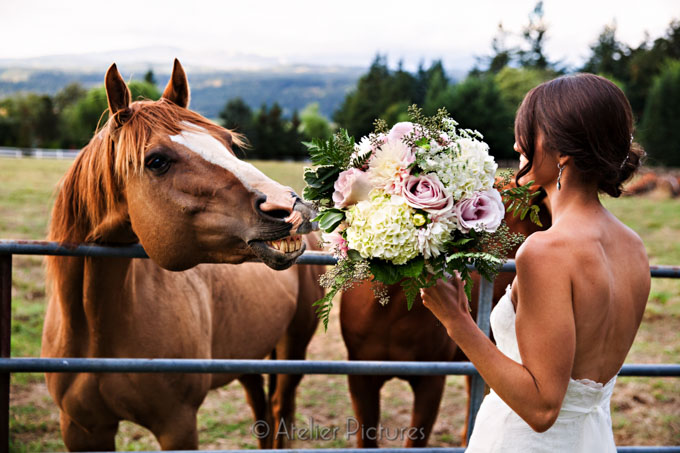 The bride's bouquet looks appetizing to her horse
